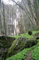 Cascade Furet