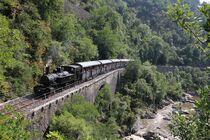 Le Train de la bière -Train de l'Ardèche - Saint-Jean-de-Muzols