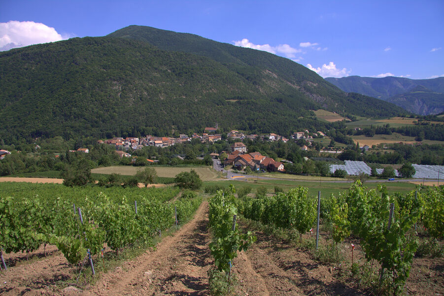Valserres et ses vignobles - © CCSPVA