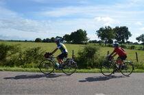 Cyclos Ⓒ Didier Boulicot