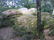 Rochers à crupules Méalithe Ⓒ Mairie de Droiturier