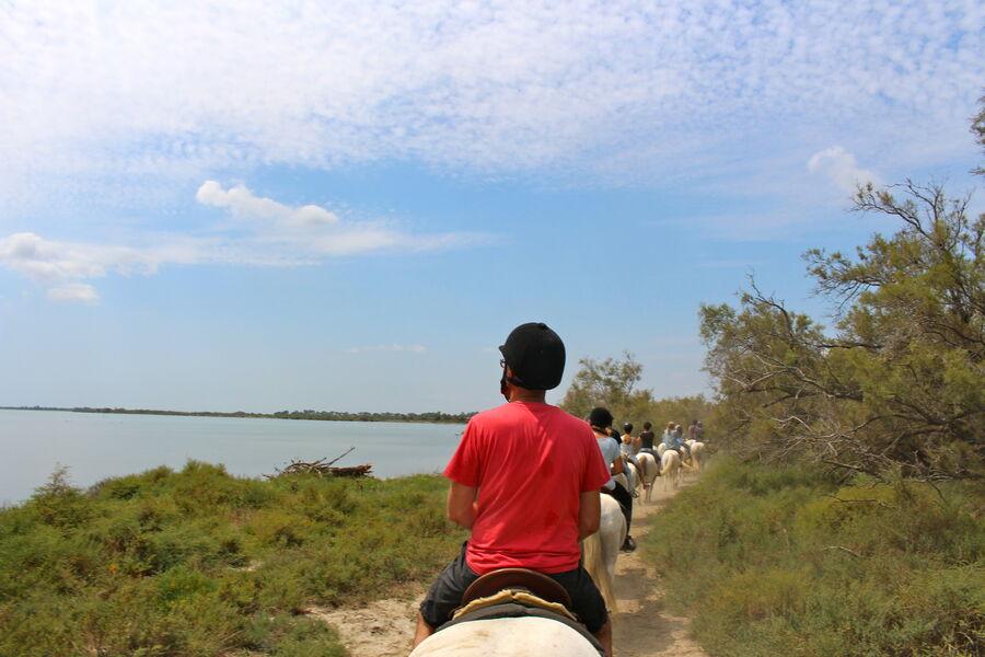 La Camargue à cheval au Domaine de Méjanes