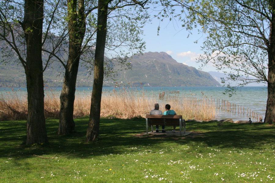 Vue sur le lac 1