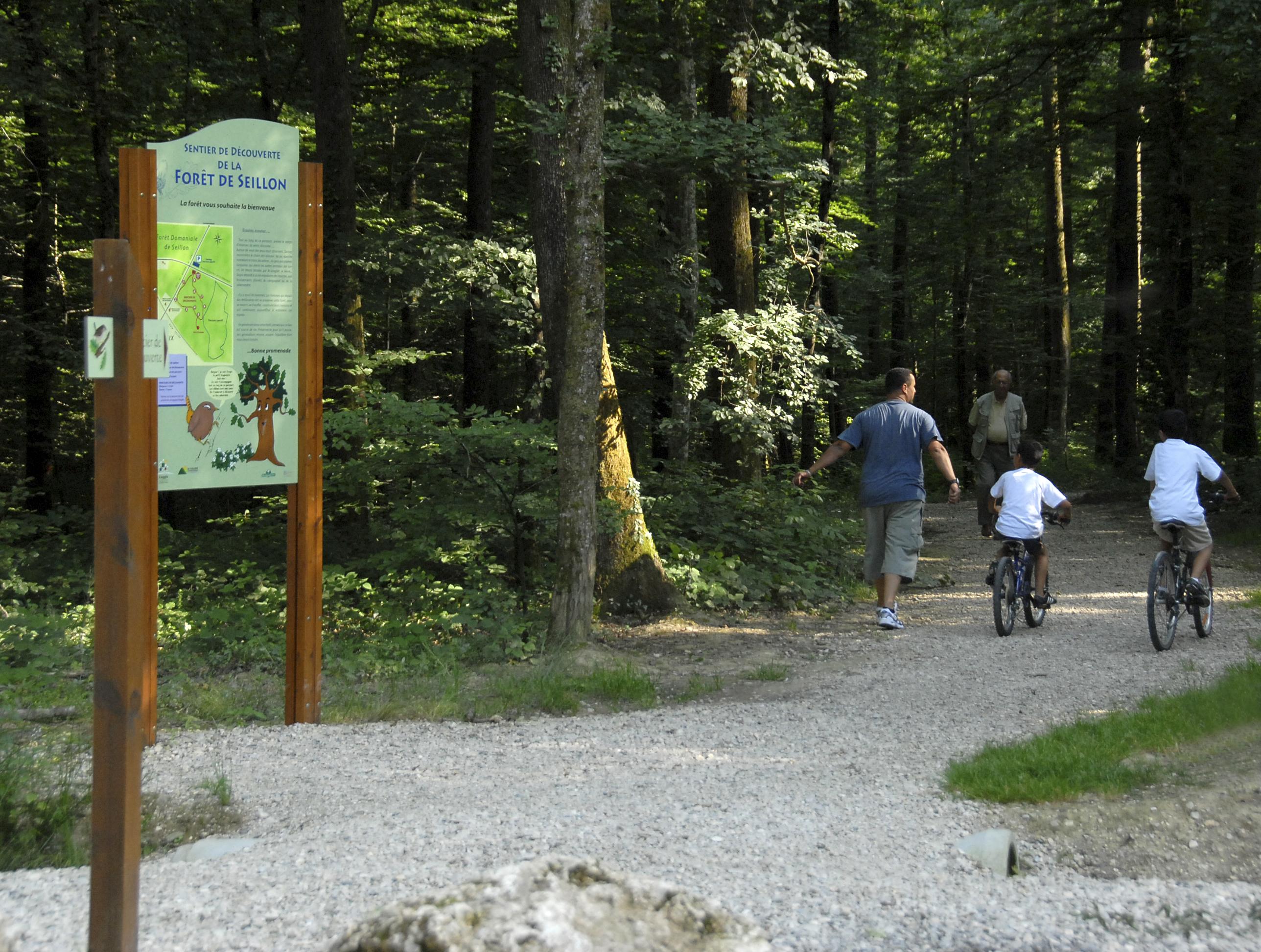 Sentier de découverte en famille dans la Forêt de Seillon