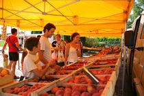 Marché de producteurs - Albon-d'Ardèche