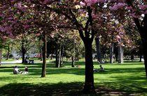 Parc du Verney G Garofolin Chambery Tourisme & Congres