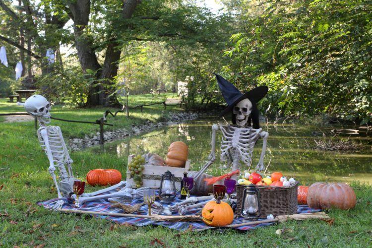 http://Halloween%20au%20Parc%20des%20Oiseaux