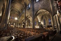 Cathédrale Saint Francois de sales  © Chambéry - G. Cottet (4)