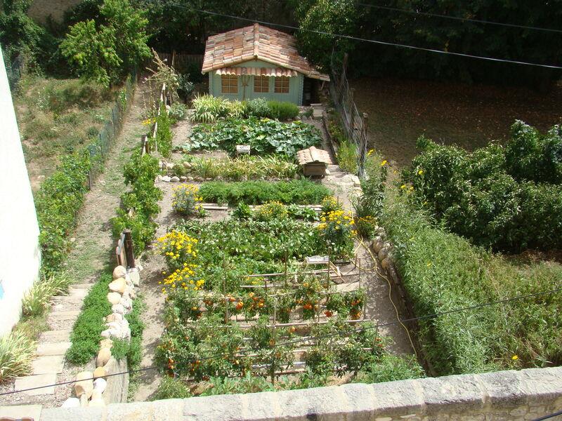 jardins - © M Manet