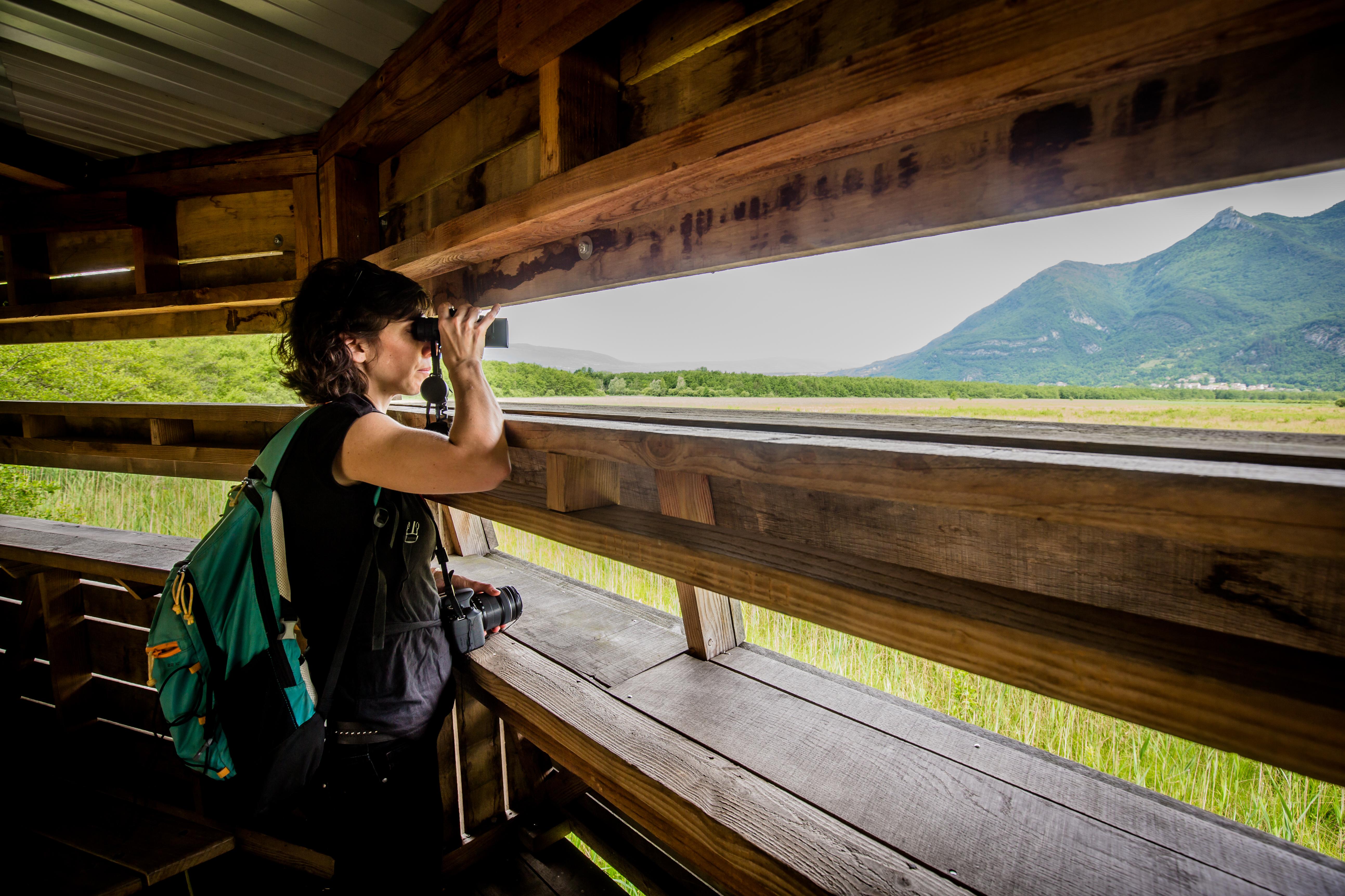 Observatoire du marais de Lavours