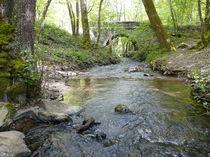 Photo Le Pont Neuf 2 Le Pont Neuf vallée de la Veauce 2 Ⓒ Smat du Bassin de Sioule