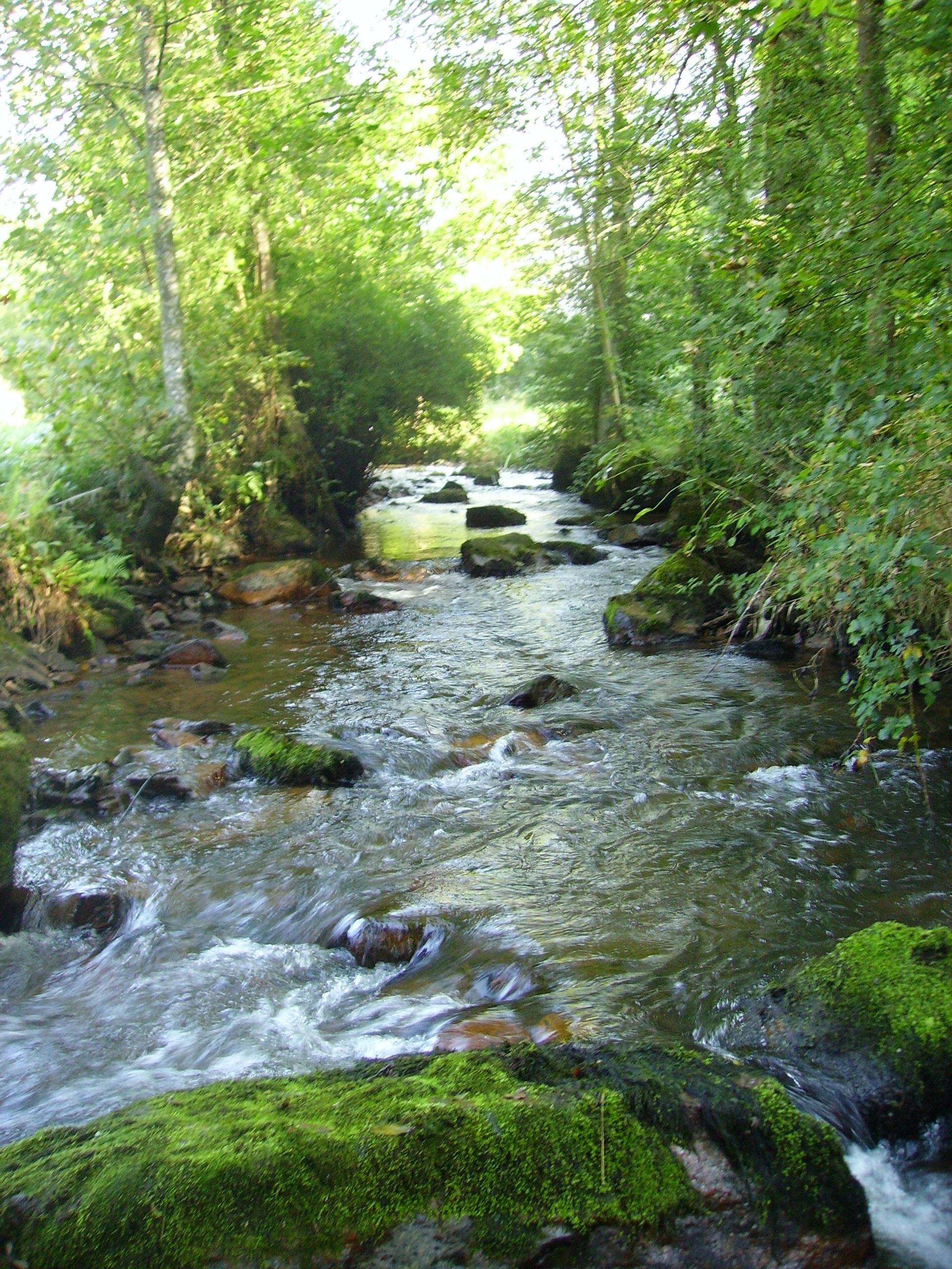 P che amplepuis le reins beaujolais vert site - Site officiel office de tourisme de cauterets ...
