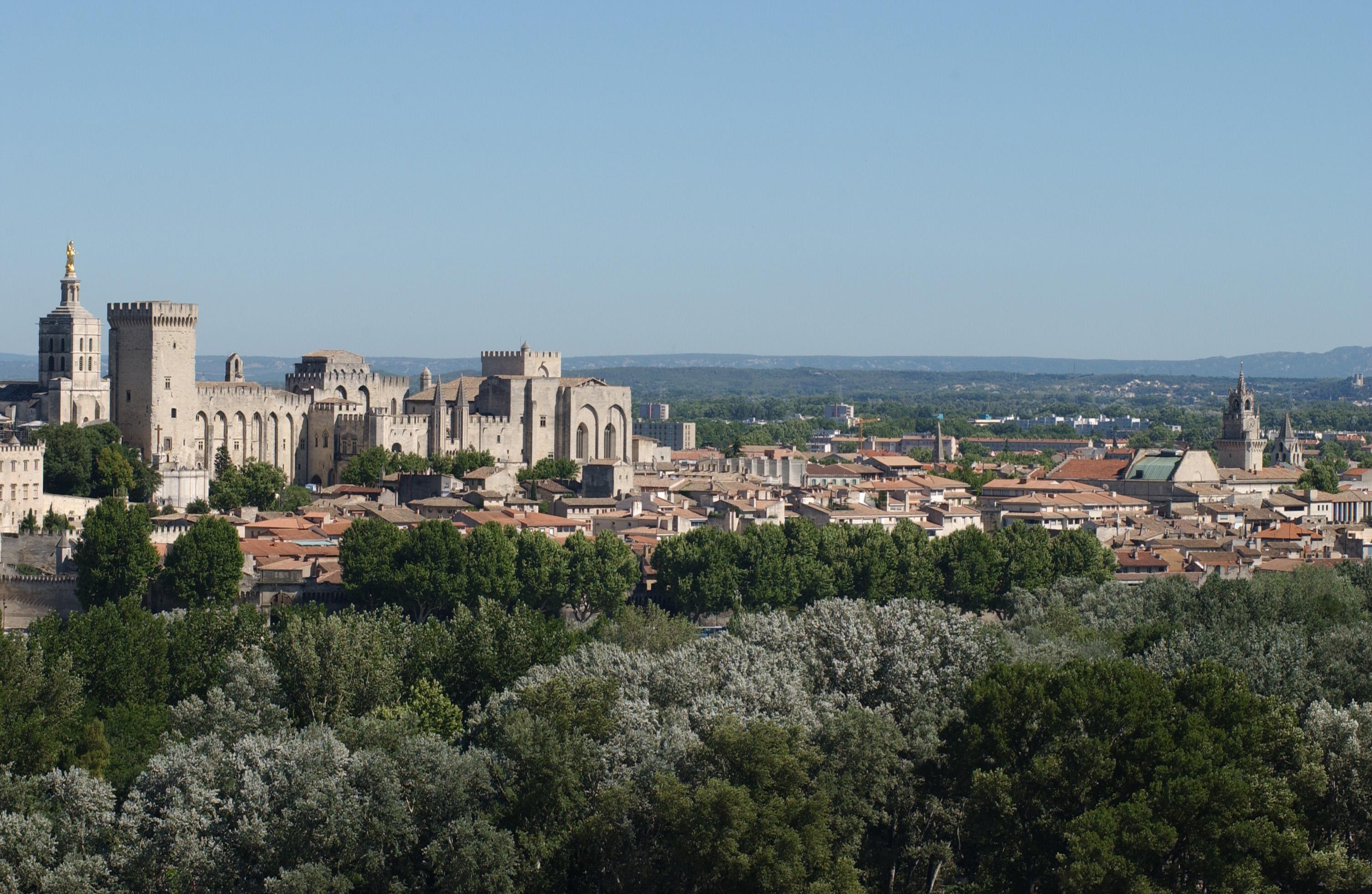 Palais des papes - vue générale