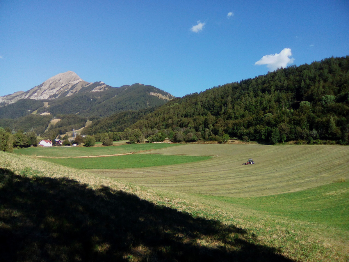 Balade 'L'agriculture du Champsaur', St Léger-les-Mélèzes
