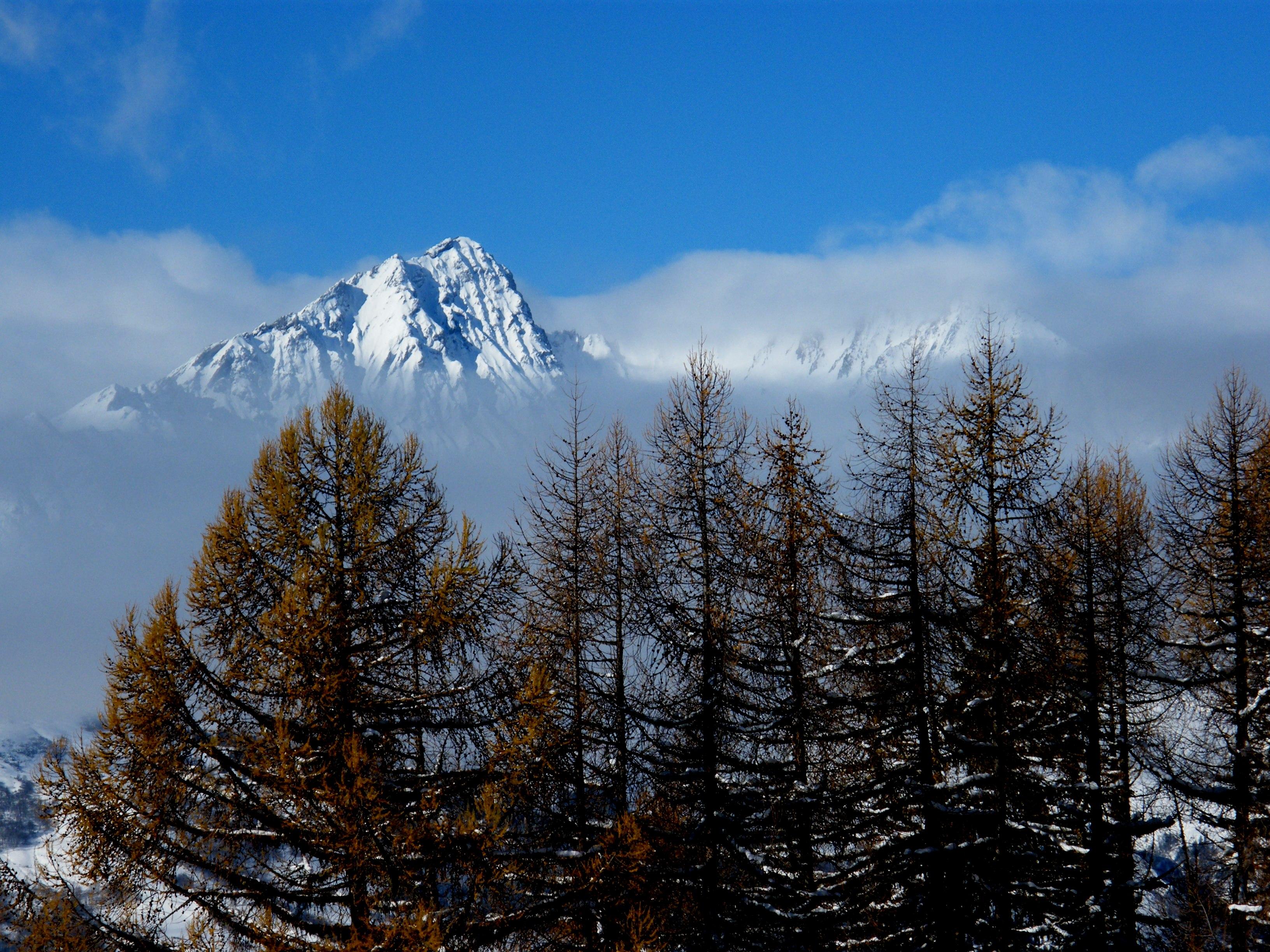 Vue sur le Mont-Blanc hiver
