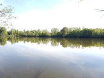 Domaine de Reugny - Étang de pêche à la carpe Plan d'eau Ⓒ M. Hochstrasser