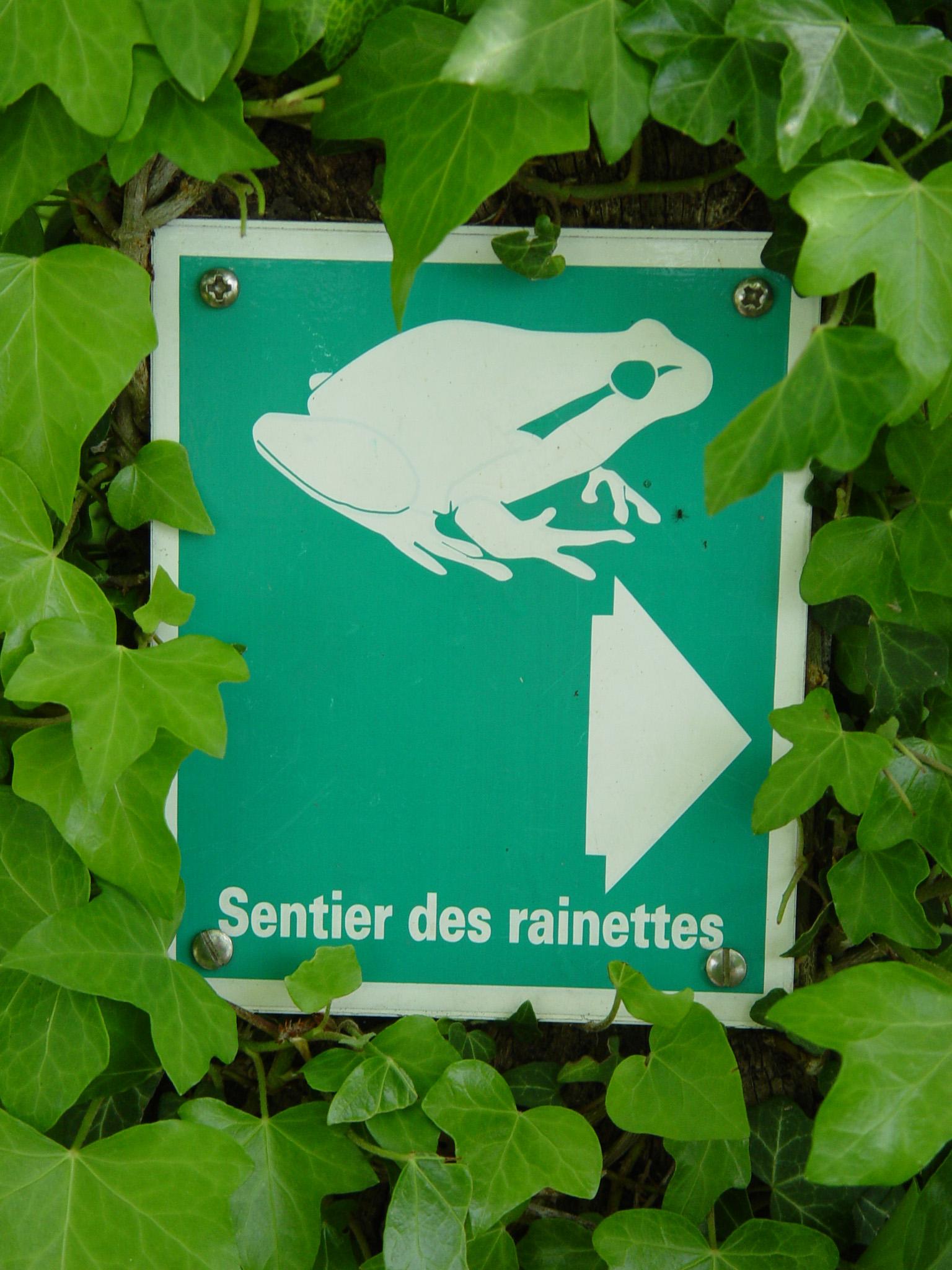 Panneau sentier des rainettes