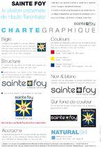 charte graphique du logo de Sainte Foy