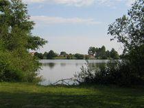 Balade de l'étang de Savigneux