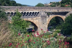 Ga op speurtocht : Le Pont Louis XIII