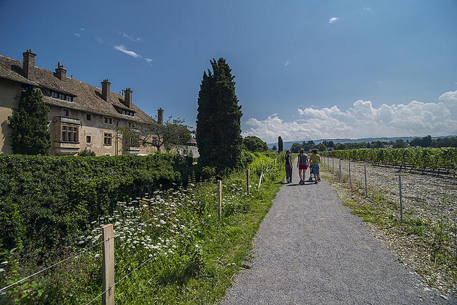 Géosite du château de Ripaille