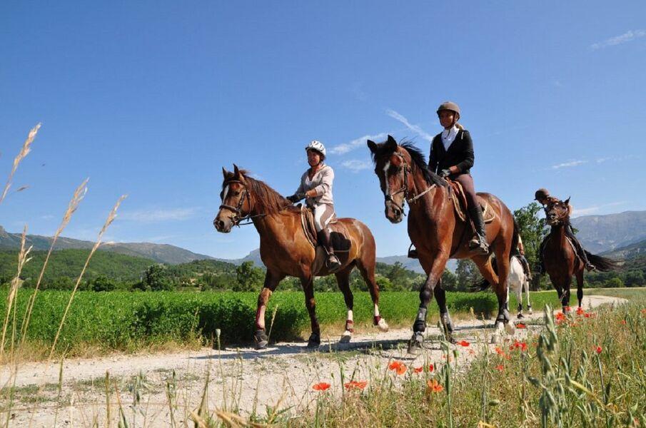Equitation : route Napoléon à cheval