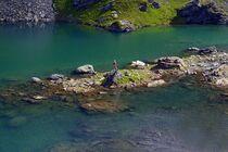 Lac noir de Montséti