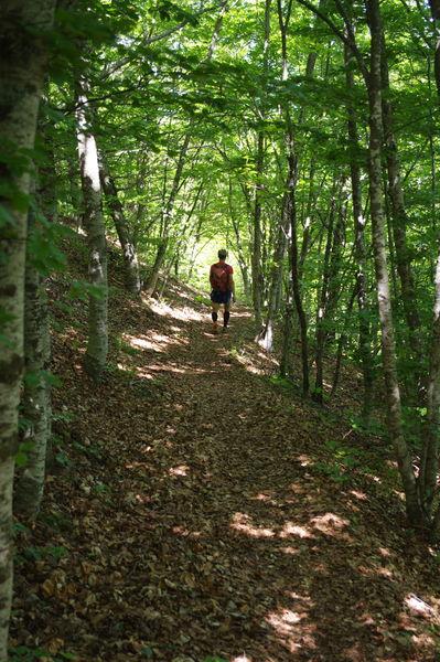 Randonnée Trail - Sommet de Larran