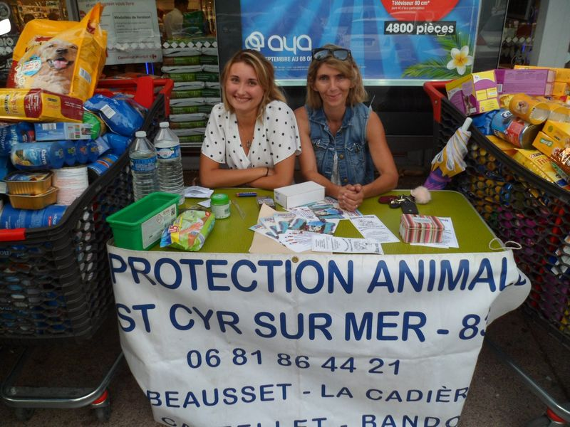 Protection animale Saint-Cyr La Cadière 2 - Protection animale Saint-Cyr La Cadière 2 - Protection animale Saint-Cyr La Cadière