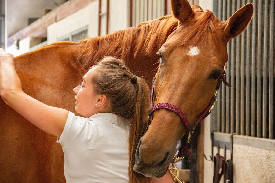 Crok'Nature • Balade à cheval