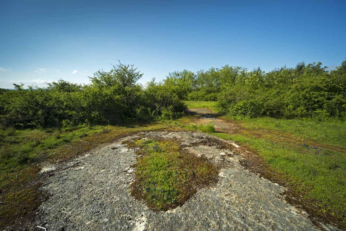 Espace Naturel Sensible des Communaux de Trept