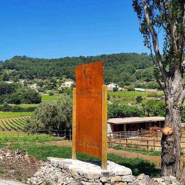 Chateau Croix d'Allons - Outdoor & vineyard - Chateau Croix d'Allons