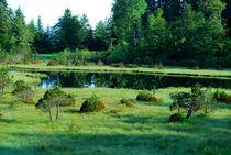Réserve Naturelle du Lac Luitel