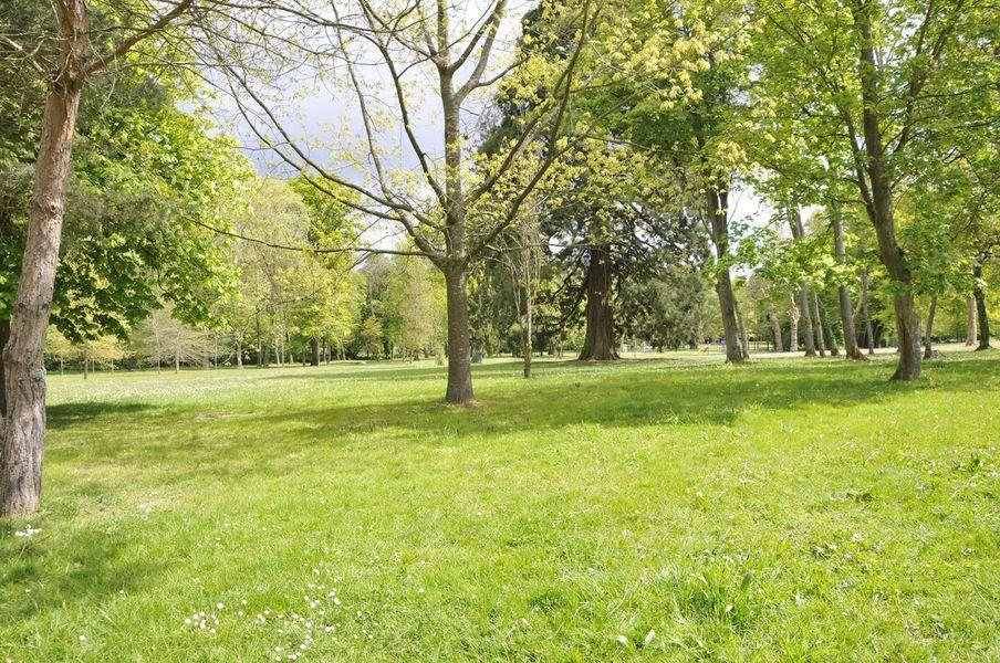 Parc du château des Celestins