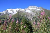 glaciers de la Gurraz