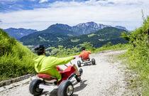 Mountain Cart - Sainte Foy