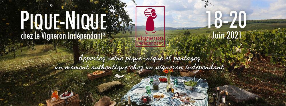 Pique-nique des vignerons au Domaine Sainte-Marie
