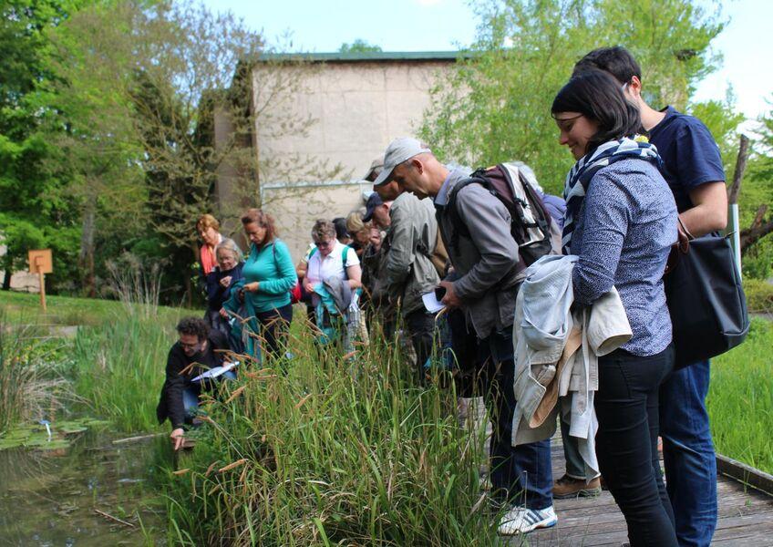 Jardin Botanique de Launay