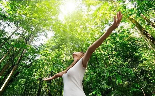 Escales Vitalité, Harmonie & Altruisme
