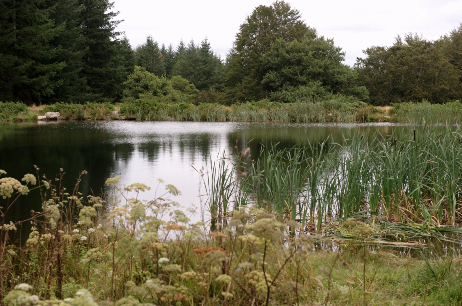 Lac du Carbonéral