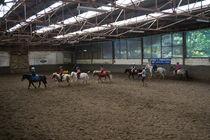 Cours poney dans le manège
