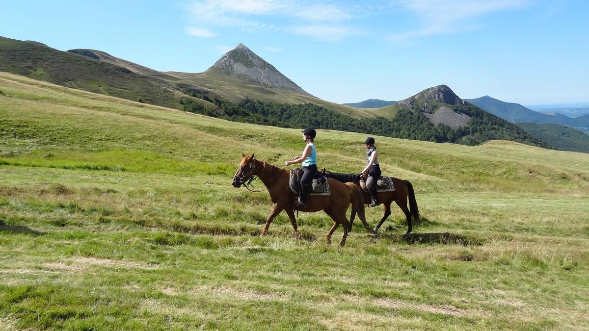 Ferme Equestre Cheval Découverte - Riding Centre