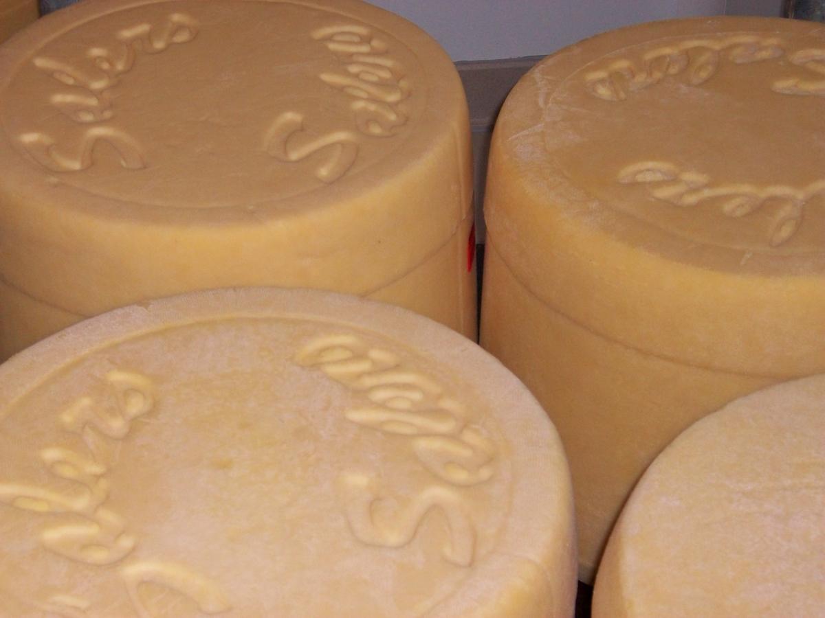 GAEC Navarro - Cheese producer and farm