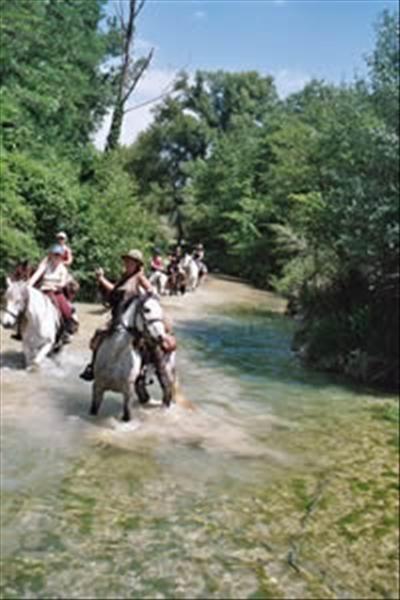 Centre de tourisme équestre Les Granges