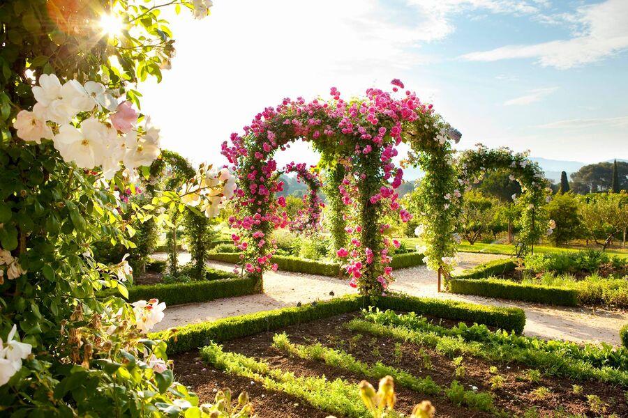 Berard's hotel - vegetable garden - Bérard