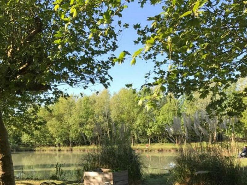 Les étangs de Bazoin
