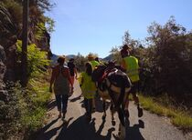 Rando'âne à la journée - Meyras