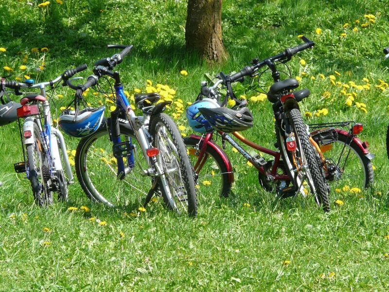 Vélo sur lebord dun chemin