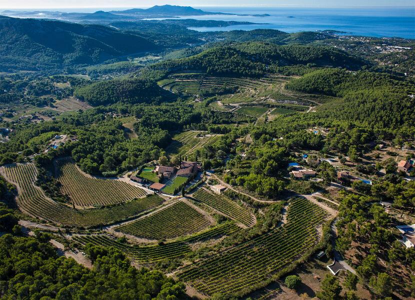 Chateau Pibarnon - Aerial view - Chateau Pibarnon