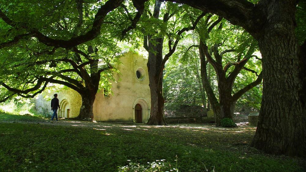 Sur le chemin des plantes de la Montagne de Lure - L\'Abbaye de Notre Dame de Lure